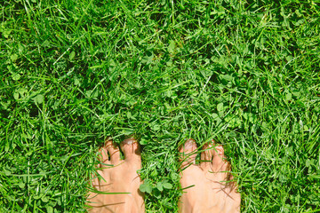 Overhead photo of feets on grass background.