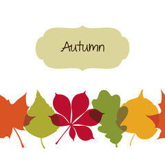 Seamless autumn background with leaves