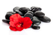 Spa stones and  red flower  isolated on white.  aromatherapy con