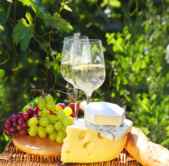 Various sorts of cheese, bread, grapes and two glasses of the wh