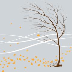 last_leaf