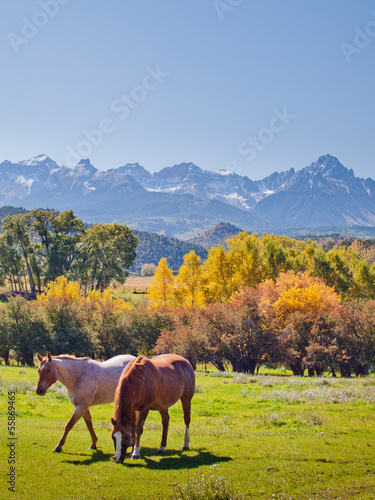Autumn on the Ranch