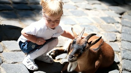 Sweet little girl in the zoo with goats