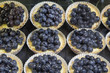 Custard Fruit Tarts with Blueberries
