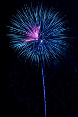 Blue and Pink Fireworks Burst