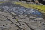 The Tessellated Pavement, natural phenomenon in Tasmania. poster