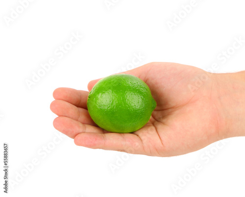 Hand holding green lemon