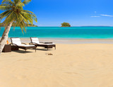 Fototapety Tropical beach with coconut tree