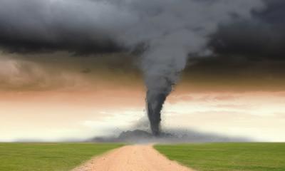 Tornado in meadow
