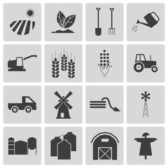 Icon farming