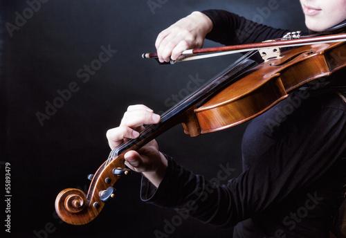 Violin - 55893479