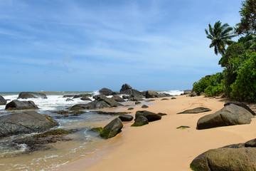 Sri Lanka. West Coast. The coastline of beaches.