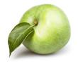 apple one leaf