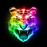 Head of tiger in colorful fire.