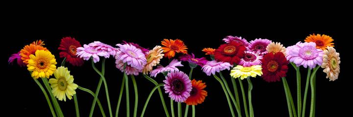 Arreglo floral sobre fondo negro.