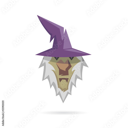 Wizard isolated on a white backgrounds