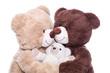 Familie - Mutter, Vater und Kind - Bären isoliert