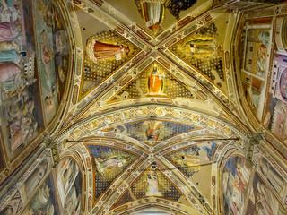 Ceiling of Castellani Chapel in Basilica di Santa Croce.