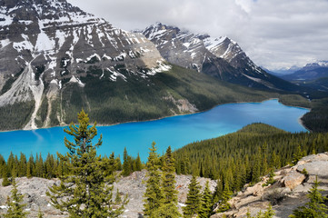 Peyto lake, Rocky Mountains (Canada)