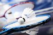 Badminton shuttlecock - 55909855