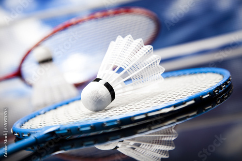 canvas print picture Badminton shuttlecock