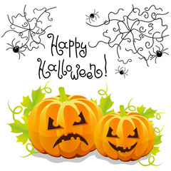 Vector halloween pumpkin with spider web