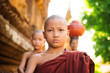 Young Buddhist monks walking morning alms