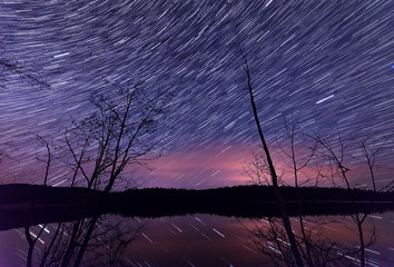 Star trails along lake with trees