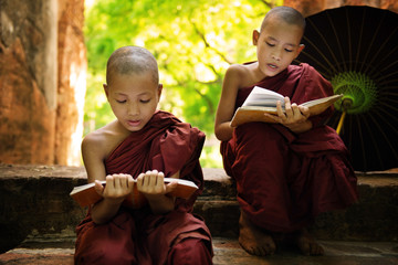 Myanmar little monk reading book outside monastery