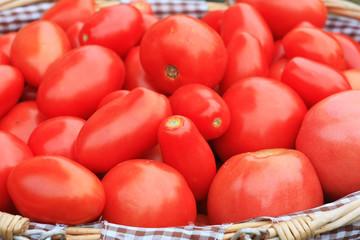 Свежие спелые помидоры