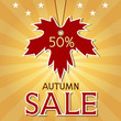 Autumn sale background with maple leaf and rays.