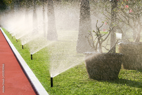 Row of sprinkler heads watering the grass - 55920066