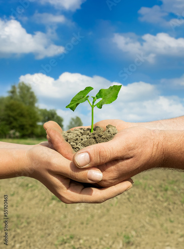 couple farmers holding plant