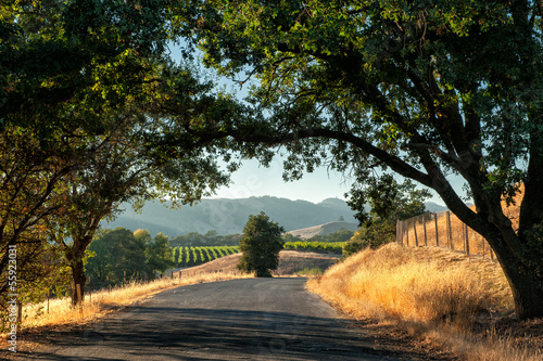 Papiers peints Culture Road trip through Sonoma wine country at harvest time
