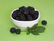 Bowl of wild blackberries - food for free