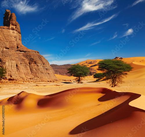 Zdjęcia na płótnie, fototapety, obrazy : Sahara Desert, Algeria