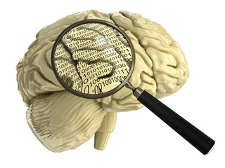 human brain with Magnifying Glass