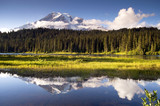 Saturated Color at Reflection Lake Mt. Rainier National Park