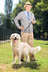 Senior man and his dog posing in the park