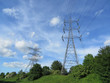 Pylons And Nature