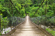 The suspension foot bridge in the jungle of Ecuador