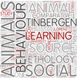 Ethology Word Cloud Concept