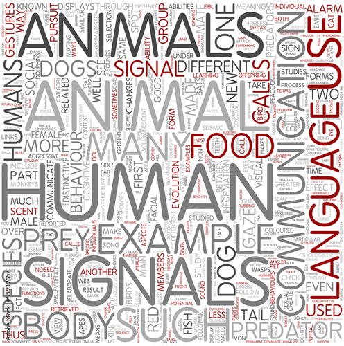Animal communication Word Cloud Concept