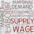 Labor economics Word Cloud Concept