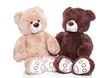 Zwei Teddybären isoliert als Liebespaar oder Mann und Frau