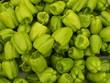 Frische grüne Paprika auf einem Wochenmarkt in Istanbul