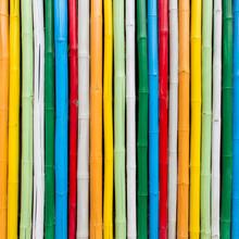 Bambou coloré pour le fond