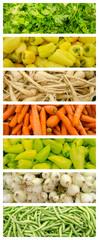 Fresh Vegetables Collection Set