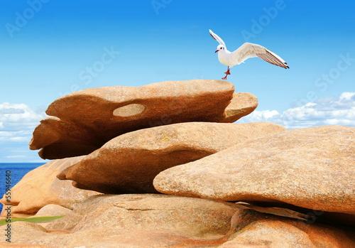Fototapeten,bretagne,granite,felsen,granite