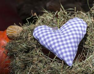 Herz im Heu